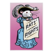 rats got rights