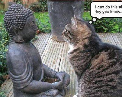 10 Ways to Improve Your Meditation